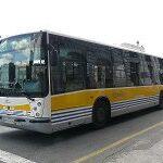 bus 2.jpg