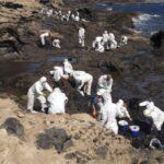 Maritim naturpark: Over 100 frivillige har deltatt under oppsamlingen av oljesølet.
