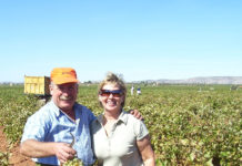 Den Norske Klubben Costa Blancas vinklubb, VinoGastro