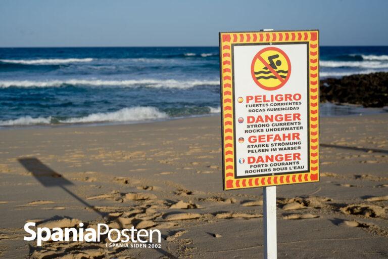 Gran Canaria og Fuerteventura har Kanariøyenes mest dødelige stender