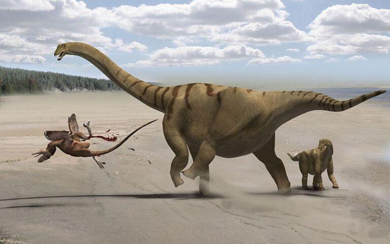 Historisk dinosaur-funn i Castellón