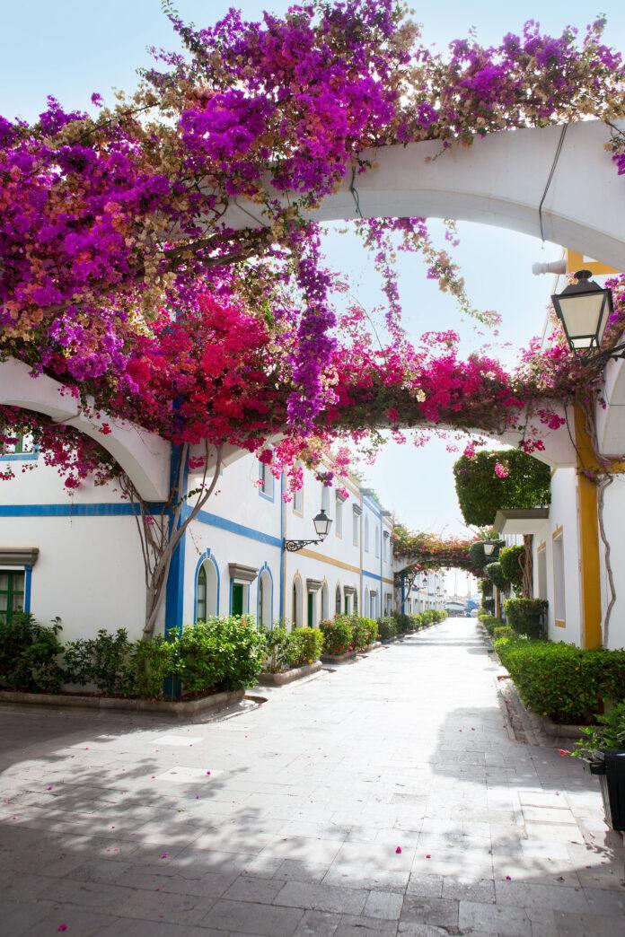 Puerto de Mogán er populært blant ferierende nordmenn som reiser til Gran Canaria.
